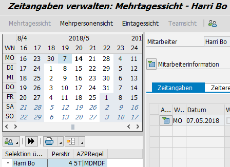 Time Manager's Workplace ohne direkte Datumseingabe