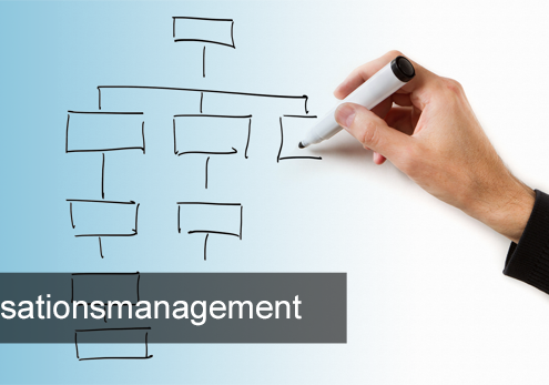 Titelbild_Organisationsmanagement