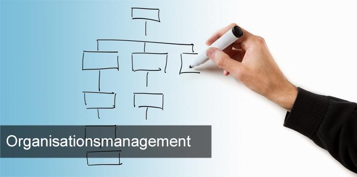 Titelbild_Organisationsmanagement