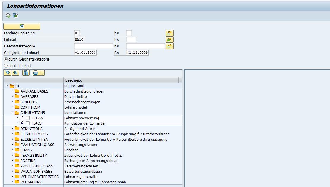 SAP HCM Lohnarteninformation: Ausgabe nach Geschäftskategorie mit zugeordneten Customizing-Tabellen