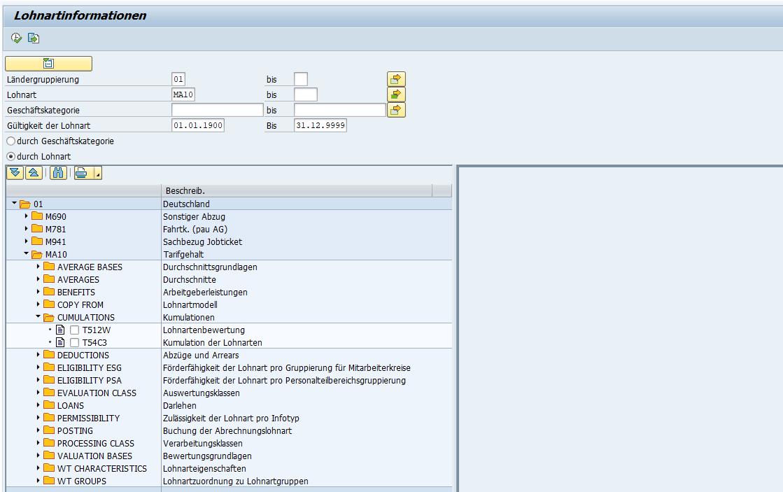 SAP HCM Lohnarteninformation: Ausgabe nach Lohnart (mit Geschäftskategorien und zugeordneten Customizing-Tabellen)